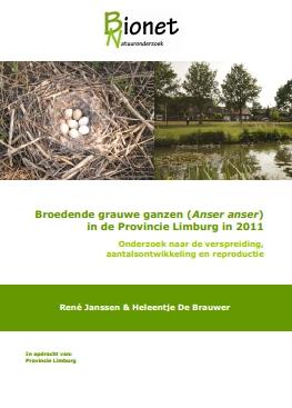 Broedsucces Grauwe gans Limburg 2011